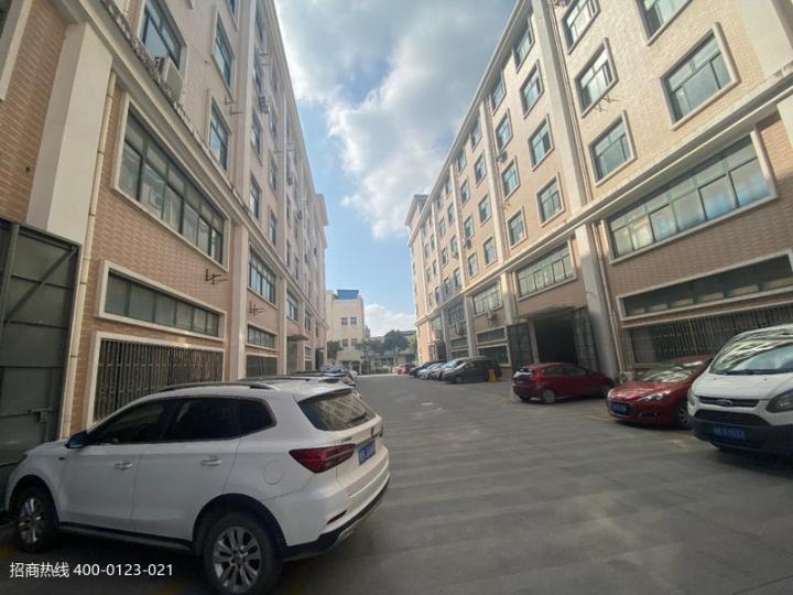 松江九亭新建园区厂房仓库出租 一楼剩1000平方,二楼300平500平800平可分租