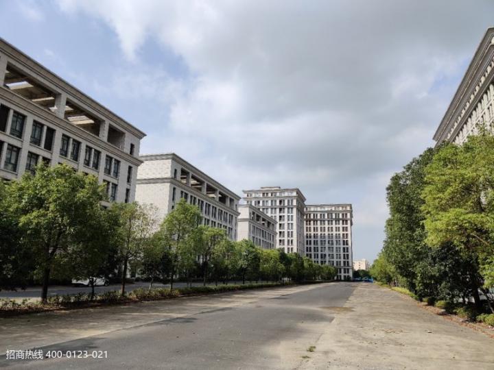 W012 松江泗泾104独栋厂房仓库出租 开发商大房东直招出租!