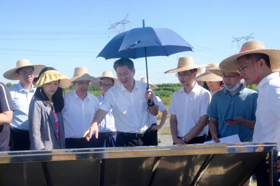 广东省调研组赴雷州调研大型产业园区规划情况